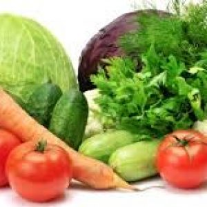 Healthy Diet Reviews